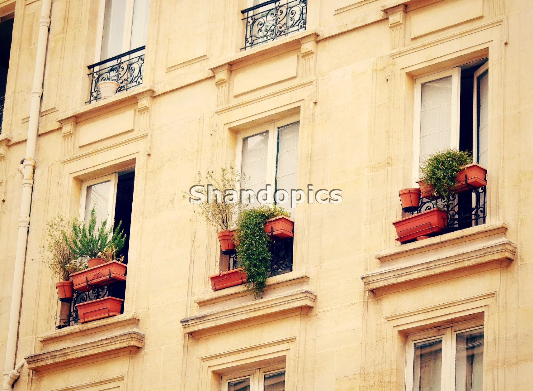 Window Plants Paris 2015